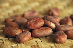 Rohe Kakaobohnen Stockfoto