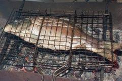 Rohe Karpfenfische auf Holzkohlengrill Lizenzfreie Stockbilder