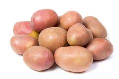 Rohe Kartoffel getrennt auf Weiß Stockbilder