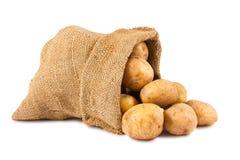 Rohe Kartoffeln im Leinwandsack Lizenzfreies Stockfoto