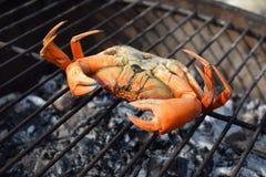 Rohe Krabbe auf dem heißen Grill Stockbilder