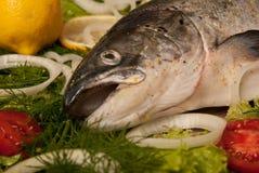 Rohe Lachse mit Gemüse und Tomate Lizenzfreies Stockfoto