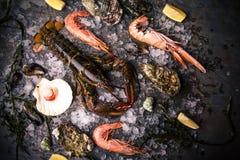 Rohe Meeresfrüchte: Hummer, Garnele und Austern lizenzfreies stockbild