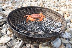 Rohe orange Krabbe auf einem Grill Stockfotografie