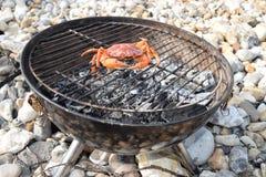 Rohe orange Krabbe auf einem Grill im Freien Lizenzfreie Stockfotos