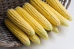 Rohe organische gelbe Maiskörner in einem Weidenkorb auf einem Licht Stockfotografie