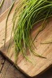 Rohe organische grüne Schnittlauche Stockfotos