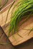 Rohe organische grüne Schnittlauche Lizenzfreie Stockbilder