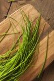 Rohe organische grüne Schnittlauche Lizenzfreies Stockfoto