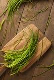 Rohe organische grüne Schnittlauche Lizenzfreie Stockfotos