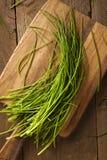 Rohe organische grüne Schnittlauche Lizenzfreie Stockfotografie