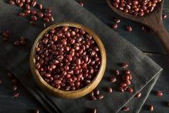 Rohe organische rote Adzuki-Bohnen Stockfotos