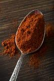 Rohe organische rote Paprika Spice Lizenzfreie Stockfotografie