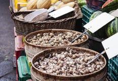 Rohe Schnecken lebendig für Verkauf im Fischmarkt von Catania, Sizilien, Italien lizenzfreies stockbild