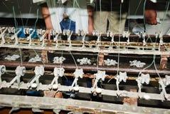 Rohe silk Fertigung durch traditionelle Art Stockfotos