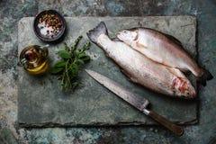 Rohe ungekochte Forellenfische mit Gewürzen und Kräutern Lizenzfreie Stockfotos