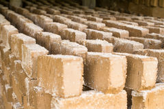 Rohe Ziegelsteine, die im Freien trocknen Stockfoto