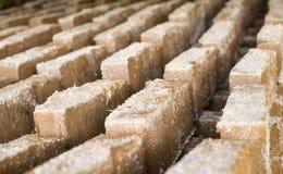 Rohe Ziegelsteine, die im Freien trocknen Stockbild
