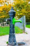 Roheisen-Wasserpumpe Stockbilder