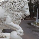 Roheisenlöwe am Yelagin-Palast, St Petersburg, Russland Lizenzfreies Stockfoto