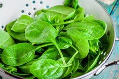 Roher frischer Spinat in einer weißen Siebsnahaufnahme stockbild