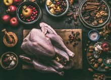 Roher ganzer Truthahn angefüllt mit Trockenfrüchten und Äpfeln auf hölzernem Schneidebrett, dunkler Küchentischhintergrund mit Be lizenzfreie stockfotografie