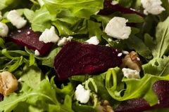Roher grüner Salat der roten Rübe und des Arugula Lizenzfreie Stockfotos
