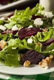 Roher grüner Salat der roten Rübe und des Arugula Lizenzfreies Stockfoto