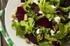 Roher grüner Salat der roten Rübe und des Arugula Stockfoto
