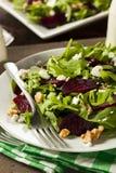 Roher grüner Salat der roten Rübe und des Arugula Lizenzfreie Stockfotografie