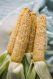 Roher Mais zugebereitet für das Backen lizenzfreie stockbilder