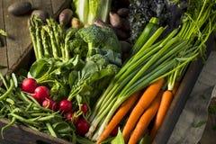 Roher organischer Frühlings-Landwirt-Markt-Kasten lizenzfreies stockbild