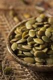 Roher organischer Kürbis Pepita Seeds Stockfoto