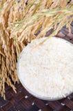 Roher Reis, Auswahl des Reises lizenzfreie stockbilder