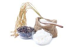 Roher Reis, Auswahl des weißen Reises des schwarzen Reises und Weiß dämpften r stockfotografie