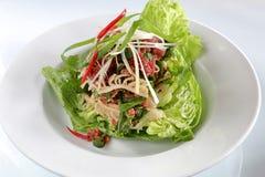 Roher Rindfleisch-Salat Stockfotografie