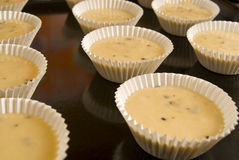 Roher Teig in Muffins Stockfoto
