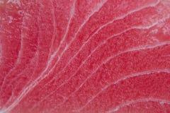 Roher Thunfischabschluß oben Lizenzfreie Stockfotos