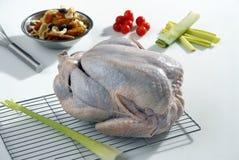 Roher Truthahn, der vorbereitet wird zu kochen Lizenzfreies Stockfoto