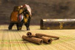 Roher Zimt von Indien Stockfotografie