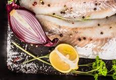 Rohes Fischfilet mit roter Zwiebel, halber Zitrone, Salz, Kräutern und Gewürzen auf dunklem Hintergrund Lizenzfreie Stockfotografie