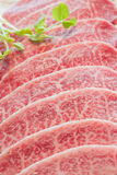 Rohes Fleisch der Scheibe Stockfotos