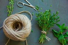 Rohes frisches grünes Thymianbündel, Edelstahlscheren und Jutefaser rope lizenzfreies stockfoto