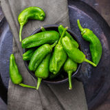 Rohes grünes mexikanisches Spanisch pfeffert Jalapeno stockbild