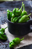 Rohes grünes mexikanisches Spanisch pfeffert Jalapeno lizenzfreie stockfotos