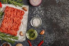 Rohes Hackfleisch auf Papier mit Zwiebel, Kräutern und Gewürzen auf bla Stockbilder
