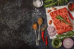 Rohes Hackfleisch auf Papier mit Zwiebel, Kräutern und Gewürzen auf bla Lizenzfreies Stockbild