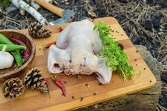 Rohes Huhn mit Gewürzen auf einem hölzernen Brett im Wald Lizenzfreie Stockfotografie