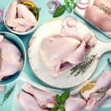 Rohes Huhnfleisch stockbilder
