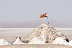 Rohes Salz vom trockenen Meer Lizenzfreie Stockfotos